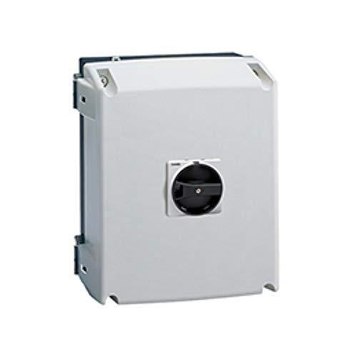 Interruptor tripolar, seccionador de cubierta no metálico en caja, 125A, con mando emergencia, 22,5 x 24 x 29 centímetros, color gris (Referencia: GAZ125B)