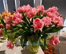 100pcs graines Tulip, Tulip agesneriana, aromatiques graines de fleurs des plantes en pot plus belles plantes de tulipes vivaces Jardin 6