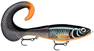 Best rapala new 2019 Reviews