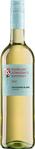 Sauvignon Blanc trocken - Weinland Königsbach-Neustadt