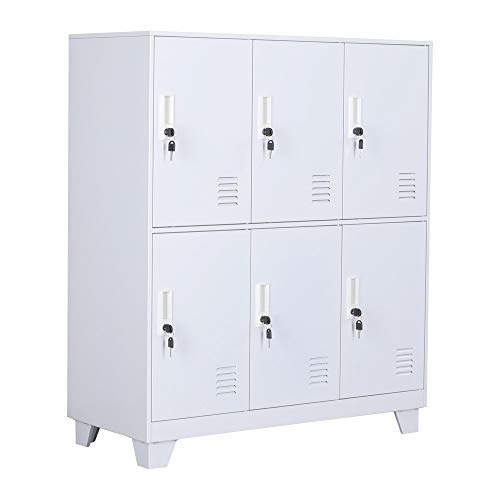 NITETRONIC 6-Door Assembled and Combinable Office Metal File Locker, School Lab Supplies, and Bedroom Organizer, Steel Cabinet to Storage Toys, Tools and Clothes