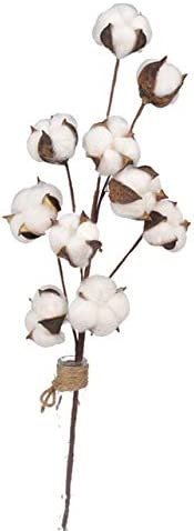 Philadelphia Mall 10 Head Natural Dried Cotton Flower Plants Artificial Flowe Sacramento Mall Fake