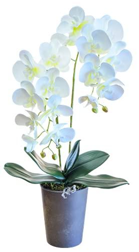 Orquidea Artificial, Altura 60 cm, Phalaenopsis, Maceta de Cerámica, Ideal para Decoración de Hogar, Tacto Natural (Orquídea 6)