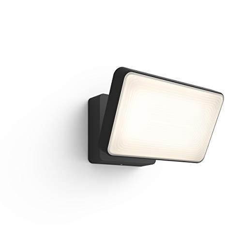 Philips Hue Discover Verstraler - Buitenlamp - IP44 - Duurzame LED Verlichting - Wit en Gekleurd Licht - Dimbaar - Verbind met Hue Bridge - Werkt met Alexa en Google Home - Zwart