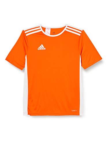 adidas Entrada 100 Camiseta de Fútbol para Hombre de Cuello Redondo en Contraste, Naranja (Orange/White), L