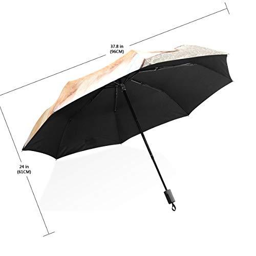 XiangHeFu paraplu hond dragen zonnebril liggend op handdoek strand 3 vouwen lichtgewicht anti-UV