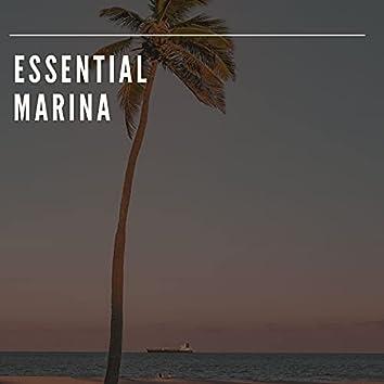 Essential Marina Experiences
