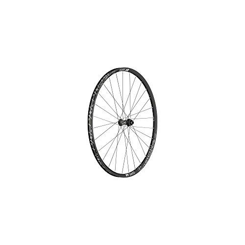 "DT Swiss 1900 Spline - 29"" Rueda Delantera Aluminio 100/15 mm Negro 2018"
