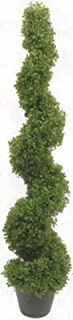 One 5 Foot 3 inch Artificial Boxwood Spiral Topiary Tree Potted Indoor or Outdoor