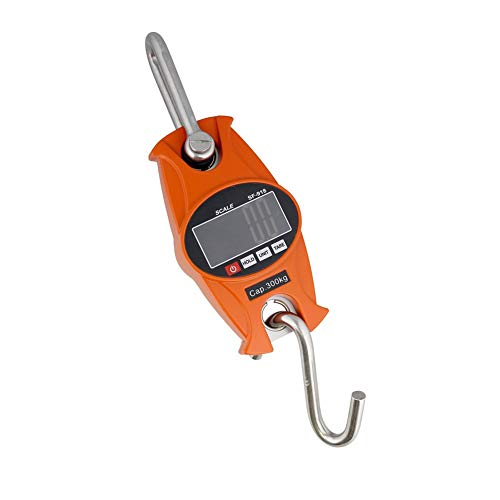 ZCY 300kg Bilance oorbeugel, draagbare aluminium schaal, elektronische ladder en mini-haak voor trappen, industrieel