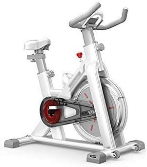 DALIBAI Stationary Silent Belt Drive Exercise Houston Mall Nashville-Davidson Mall H Bike Cycle