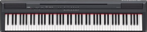 Yamaha P105