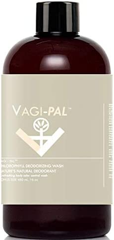 Vagi-Pal Chlorophyll Super Fresh Vagina Ranking TOP14 Outstanding Wash