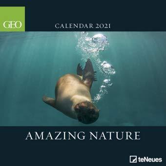 Amazing Nature - Broschurkalender - Kalender 2021 - teNeues-Verlag - GEO Wandkalender mit Bezaubernden Aufnahmen und Platz für Eintragungen - 29,8 cm x 29,8 cm (offen 29,8 cm x 59,8 cm)