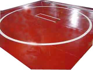 """Wrestling Mat - New, 12'x12' (Two 6'x12' Pieces), Mat:Medium Green, Markings:None, 1"""" - Two Pieces"""