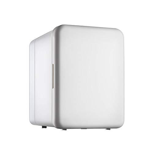 waart Mini-mini-koeler en draagbare kachel voor in de auto, ideaal voor in de auto, thuis en buiten, dubbele functie koelkast vriesapparaat 12 V/220 V