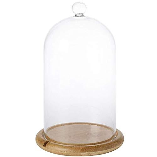 Cubierta de vidrio preservado, cubierta de cristal transparente con forma de flor inmortal y parte inferior plana de madera de bambú para bodas, fiestas de San Valentín
