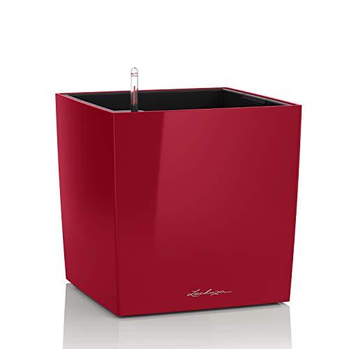 Lechuza Premium Cubeta de plantado Cerrada, Rojo Escarlata Brillante, 30x30x30 cm