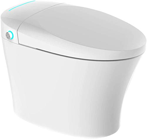 Mecor Intelligent Smart Toilet, Auto Flush, Massage Washing, With Advance Bidet And Soft Closing Seat, Heated Seat with Integrated Multi Function Remote Control, Smart Bidet