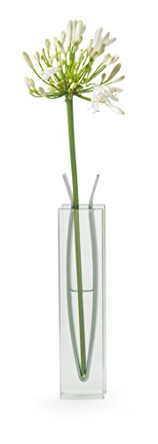 Arteum 13392 Ribbon Vase Haut de Décoration Multicolore
