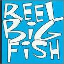 Top reel big fish dvd for 2020