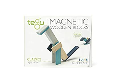 Tegu Magnetic Wooden Block Set by Tegu