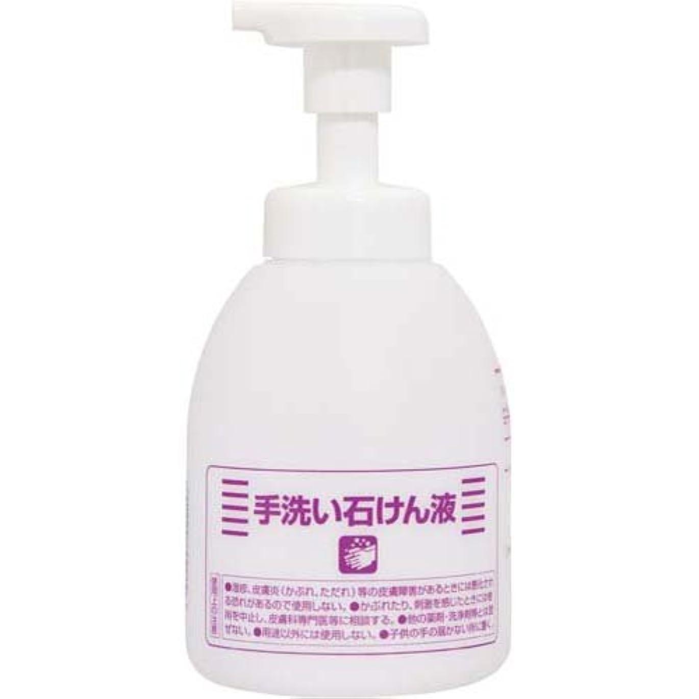 窒息させる敬の念離すニイタカ 薬用ハンドソープ 専用空ボトル500ml×6本