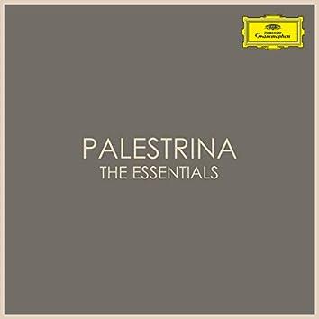 Palestrina - The Essentials