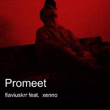 Promeet (feat. Manu)