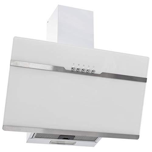 vidaXL Dunstabzugshaube 60 cm Edelstahl und Hartglas Weiß