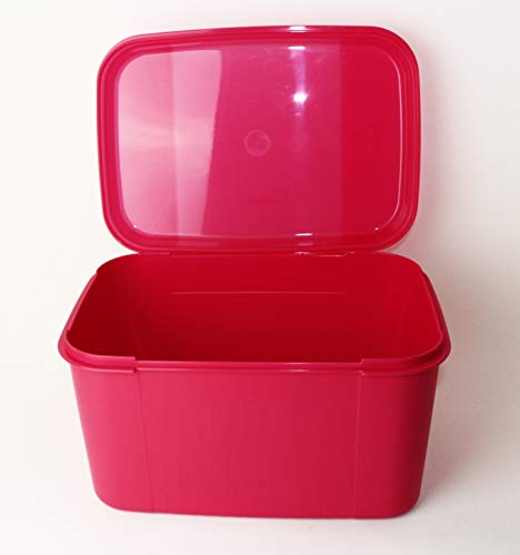 Tupperware® XXL- Naschkatze Neue Trendfarbe! Picknick-Box