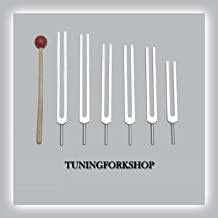 TFS Tuningforkshop 6 Pc Solfeggio Tuning Fork Including 528 hz with Mallet+Pouch