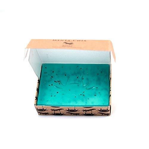 Jabón Natural Artesanal Refrescante de Menta y Chia con propiedades terapéuticas para levantarte y concentrarte | Base Glicerina | Libre de plásticos | Fragancia Natural Menta [Ajolote Negro 100 g ]