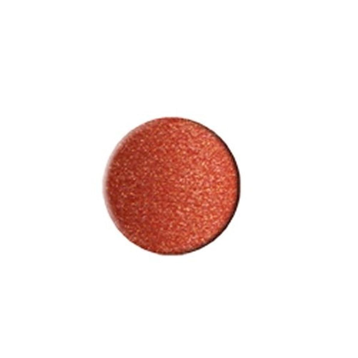 アームストロング同盟リファインKLEANCOLOR Everlasting Lipstick - Malibu (並行輸入品)