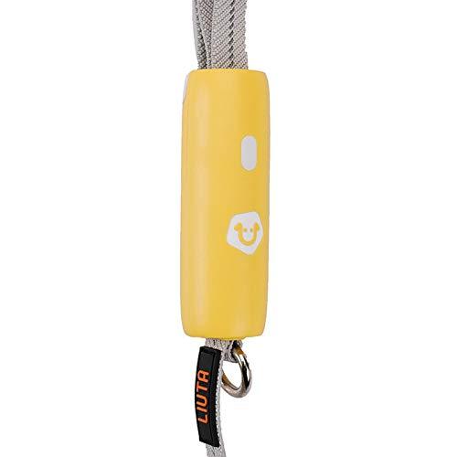 Yodio Pet ProductsDog Leashes, Small and Medium Dog Lead, Elastic Rope Leash, Corgi Dog Chain