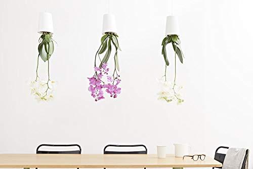 Boskke Sky Planter - Vasi da Fiori pensili, in Materiale Riciclato, 3 pz, Colore: Bianco