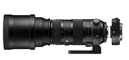 Sigma 150–600mm F5–6.3DG OS HSM Sport Objektiv mit tc-1401Konverter Kit für Nikon Kamera