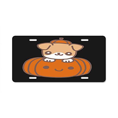 qidushop Halloween-Boof Metall-Kennzeichenabdeckung für Autokennzeichen, Rahmen