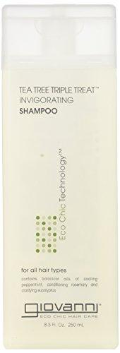 Giovanni Hair Care Shampoo Invirgorating Tea Tree Triple Treat 8.50 oz by Giovanni Hair Care [Beauty] (English Manual)