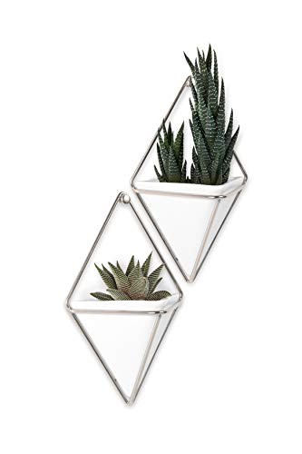 Umbra Trigg Hanging Planter Wall Decor Set for Displaying Small Plants Pens and Pencils Makeup Accessories White/Nickel