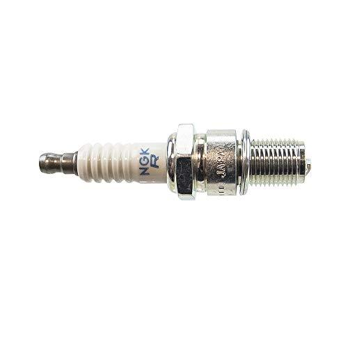 ski doo spark plugs - 1