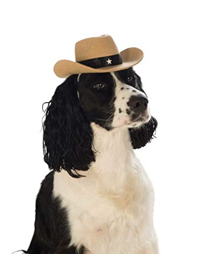 Horror-Shop Cooler brauner Cowboy-Hut für Hunde zu Fasching & Halloween S/M