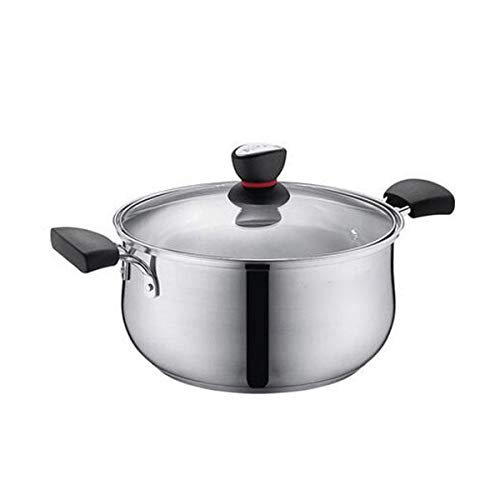YWSZJ Acier inoxydable Capsulated Bottomtock Pot avec couvercle en verre, Prêt à induction et lave-vaisselle