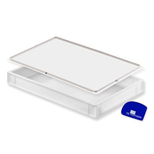 Pizzaballenbox mit Deckel (60 x 40 x 7,6 cm) Kunststoffbehälter für Pizzateig, Stapelbehälter, Teigwanne, Gärbox, Teigbox (1x Box mit Deckel)