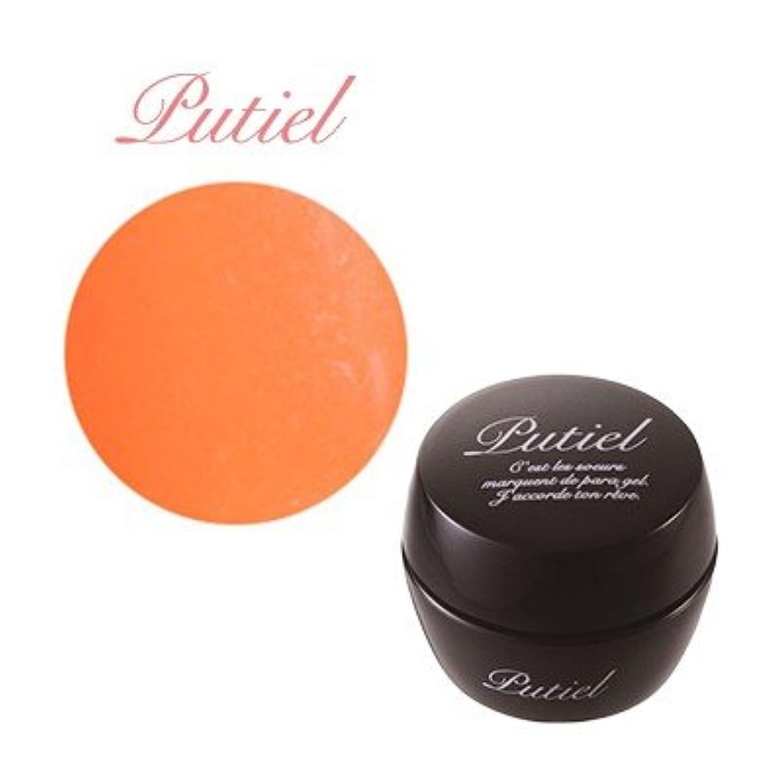 プティール カラージェル 134 オレンジ 2g