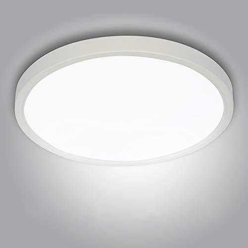 20W LED Deckenleuchte Klein, bapro φ17cm Deckenlampe Bad 890LM 6500K Kaltweiß Mordern Badezimmerlampe für Badezimmer Küche Wohnzimmer Balkon Flur Schlafzimmer Büro[Energieklasse A+]
