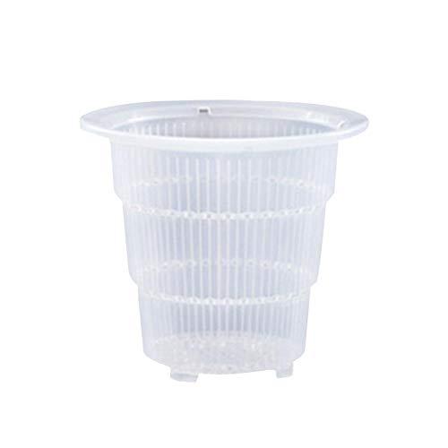 Vaso De Plástico Transparente Maceta Pared Maceta Transparente Maceta De Plástico Verdes...