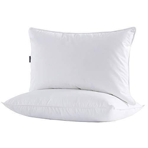 puredown® Lot de 2 Oreillers en Plumes d'oie avec Enveloppe 100% Coton Double, Support Moyen et Ferme 48 x 74cm Blanc
