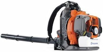 Amazon Com Gas Leaf Blower