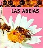 Las abejas: 12 (Descubrimos)